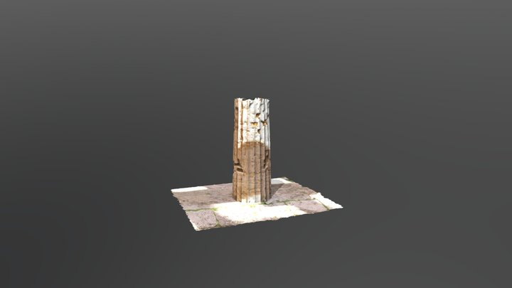 Colonna Tempio Nettuno 4° dx 3D Model