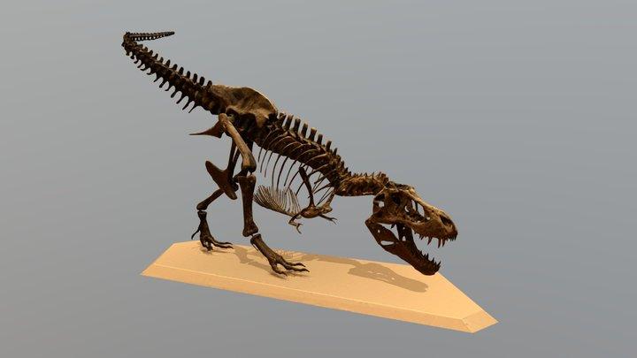 T-rex Stan Fossil Replica 3D Model