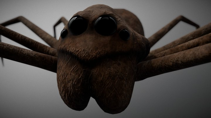 Hungry Spider 3D Model