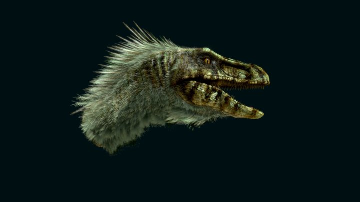 Raptor head test 3D Model