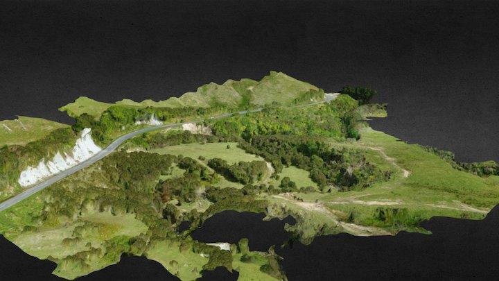 Pahiatua Pongaroa Road (RP307-3009) 14 Nov 2017 3D Model