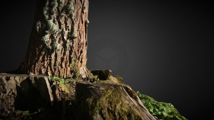 Tree 001 3D Model