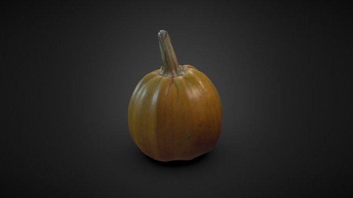 Pumpkin Scan 02 3D Model