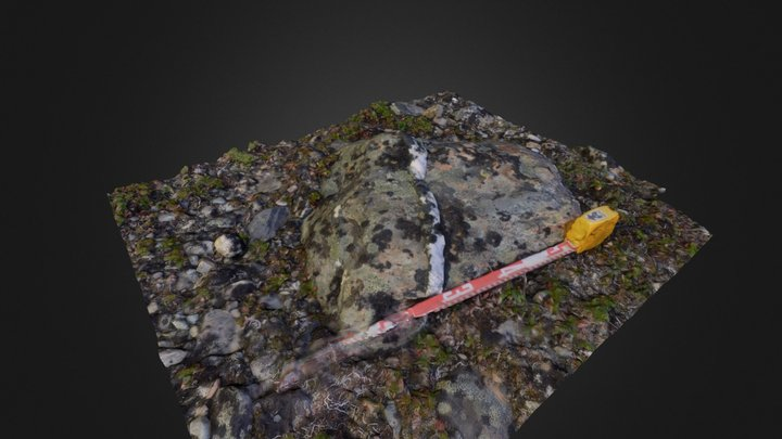 Boulder with Quartz Vein v1 3D Model