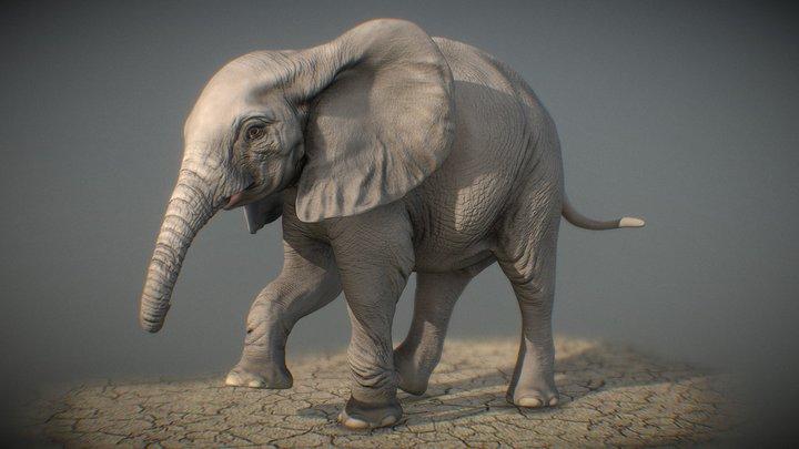 African Elephant calf sculpt 3D Model