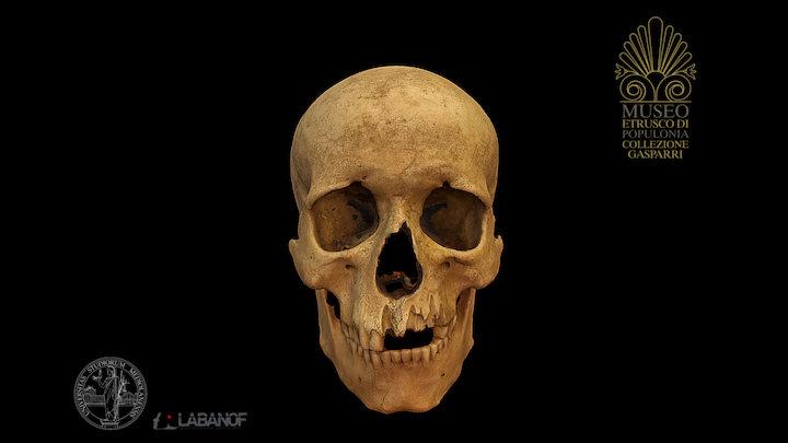 Skull of the shackled man 3D Model