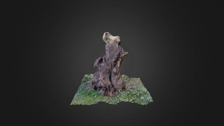 Tree_trunk 3D Model