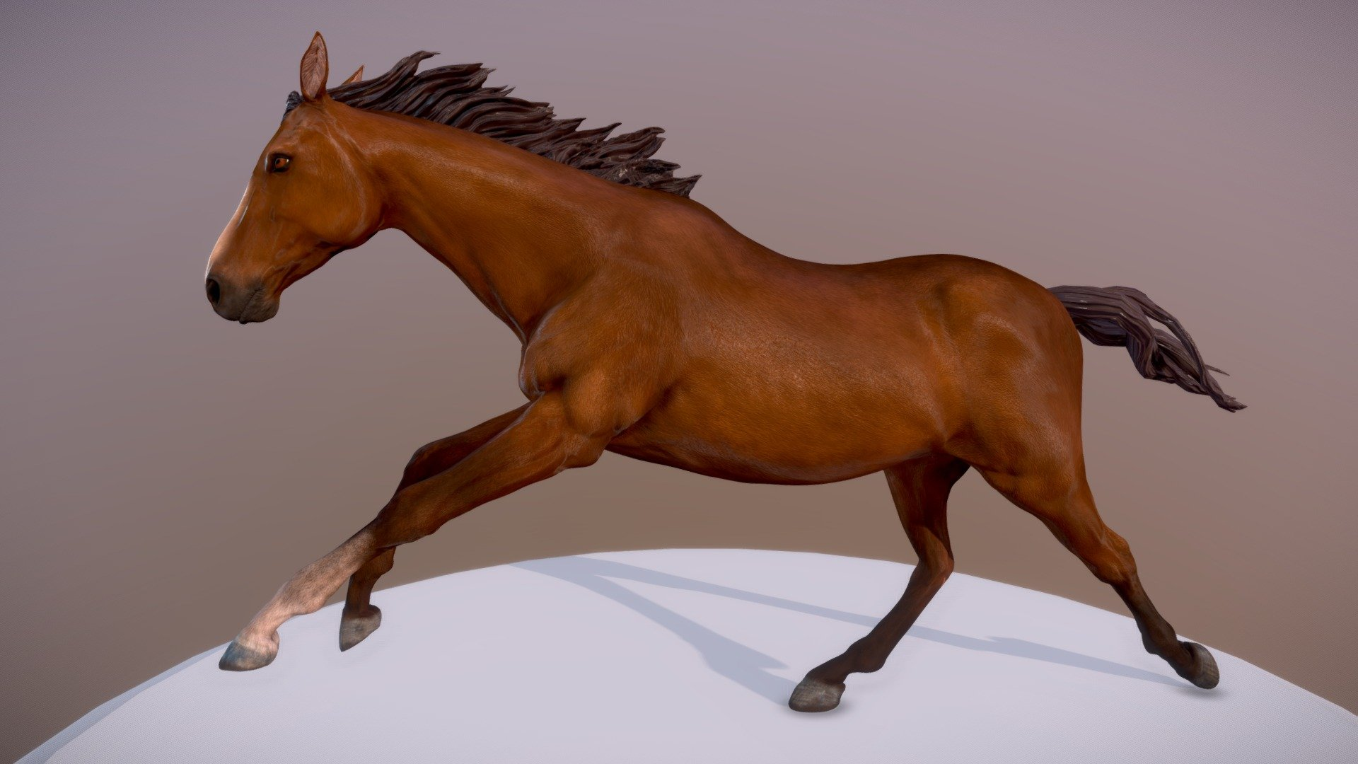 Horse Running Download Free 3d Model By Verena Boeck Kling Cd75d66 Sketchfab