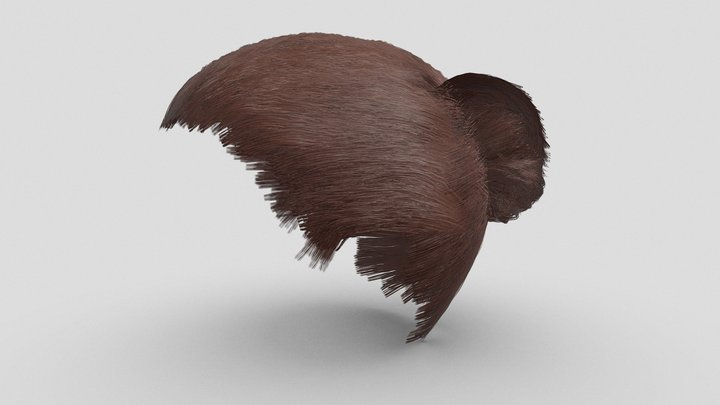 Women's Bun Hair Style for Character 3D Model