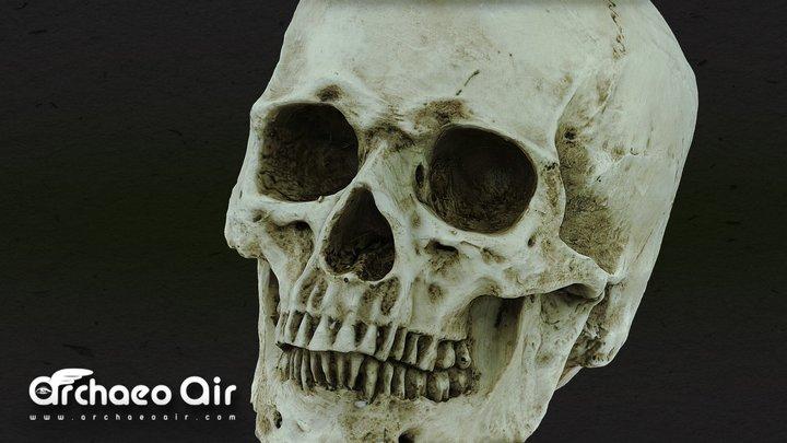 Human Skull - 3D Scan - Totenschädel 3D Model