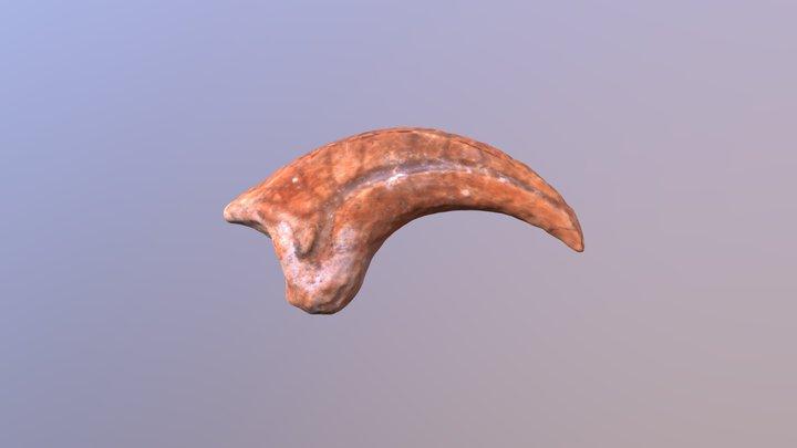 Oviraptorid Claw 3D Model