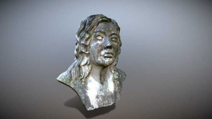 MODELO FOTOGRAMÉTRICO DE 'PETREA' 3D Model
