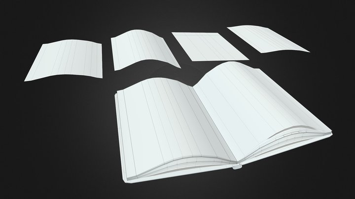 Open Book Paper Pieces untextured 3D Model