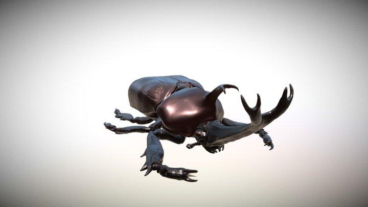 Lo res Japan rhinocerous beetle 3D Model
