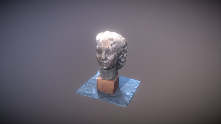 Hair Head 3D Model