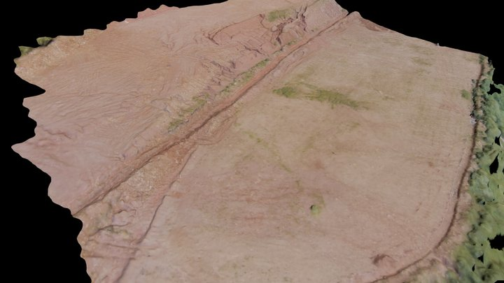 Feltrins Área para Logistica 3D Model