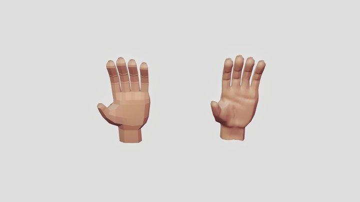 Hand Both(final) 3D Model