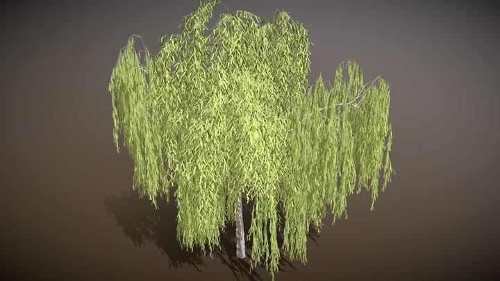 Willow / Trauerweide 3D Model