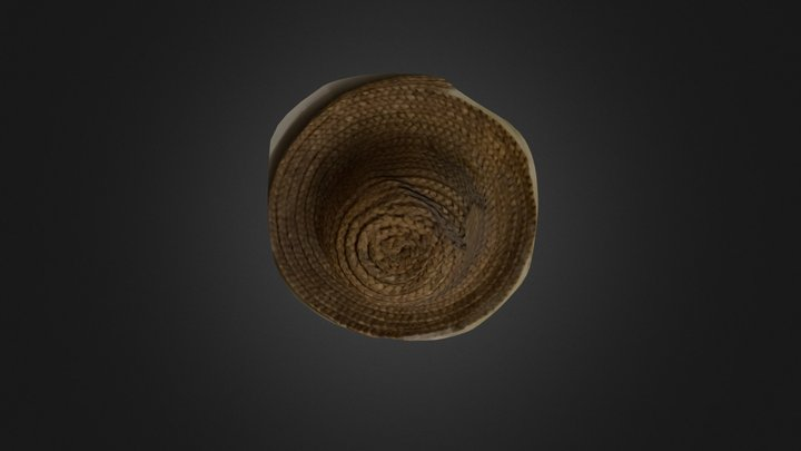 Hat, CICADA Workshop at Cene Stupar 3D Model