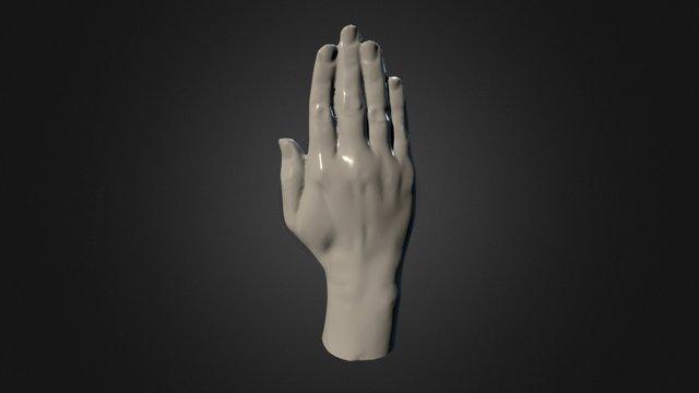 Anatomy - Hand - Female 3D Model