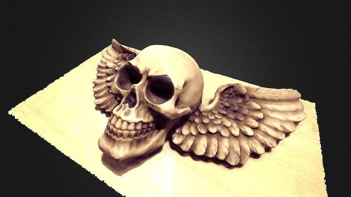 Winged Skull (Photogrammetry) 3D Model