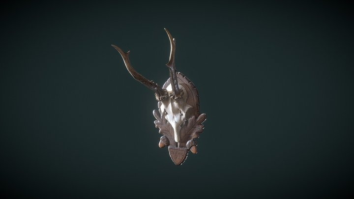 Roe Deer Antlers 3D Model