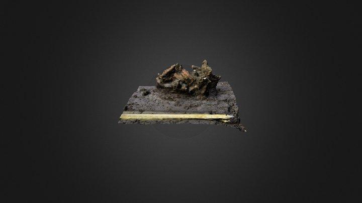 Varaje leiukogum 3D Model