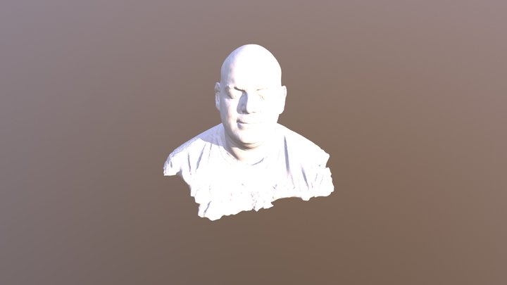 Head Scan With Peel 3d - By Aniwaa 3D Model