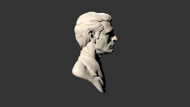 12 Portrait 3D Model