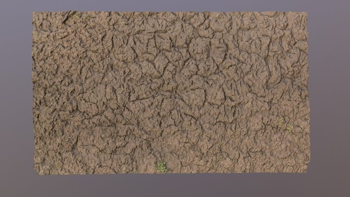 Cracked Mud 3D Model
