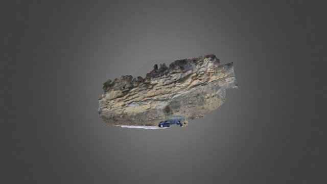 Submarine channel margin_low res 3D Model