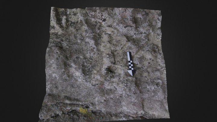 Antropomorfo de Petón da Campaíña (Corme) 3D Model
