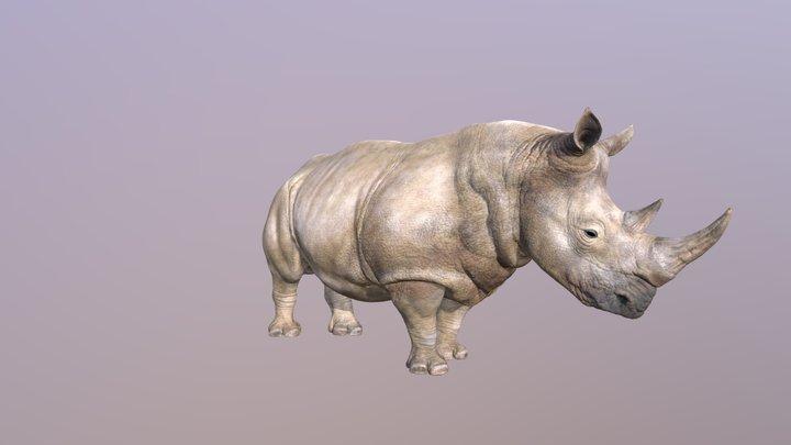 Animated rhino 3D Model