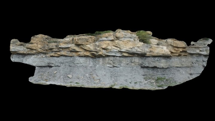 Tidal bar sandstones (Roda d'Isàbena) Loc1 3D Model