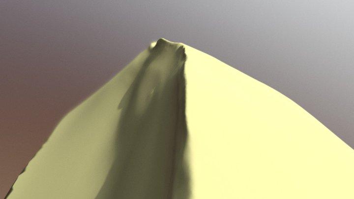 Desert - SculptJanuary18 Day 4 3D Model