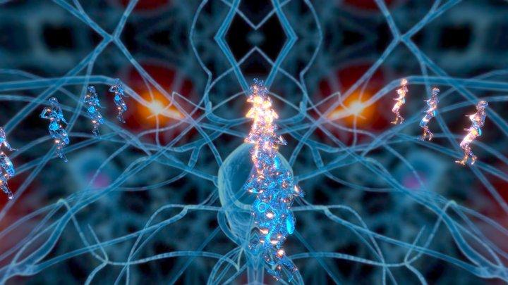 Let the neurons dance ! 3D Model