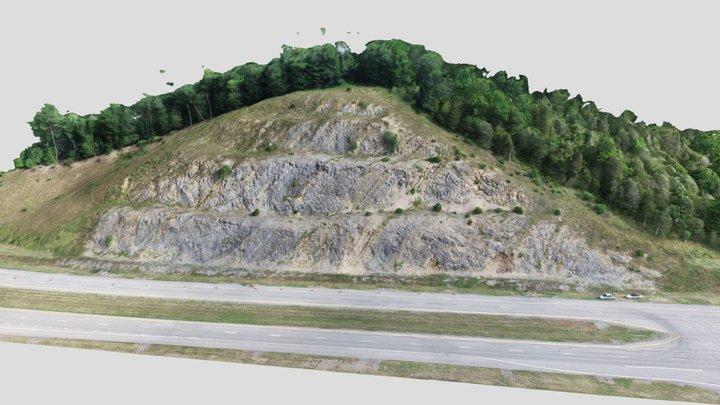 Tonoloway Limestone - Corridor H WVa 3D Model