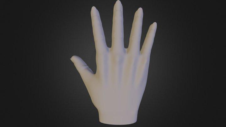 Basic Hand 3D Model