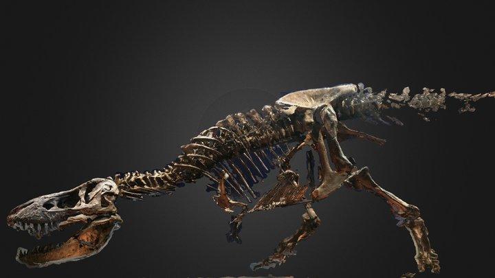 Un T. rex à Paris 3D Model