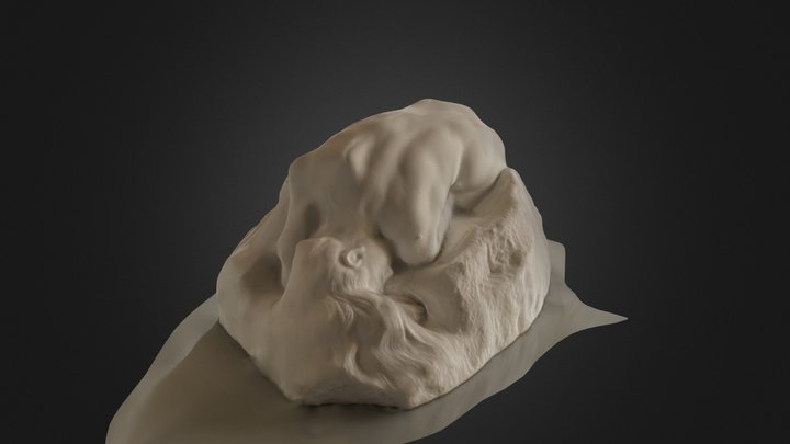 Rodin La Danaide 3D Model