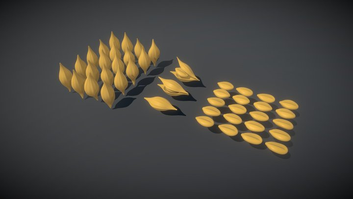 Wheat Seeds — FREE 3D Model
