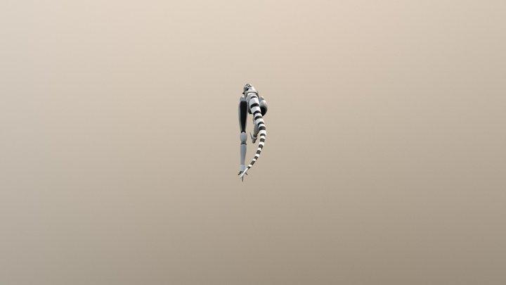 Sino Movement Anim 3D Model