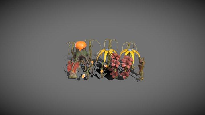 Projet Aaron - Plants 3D Model