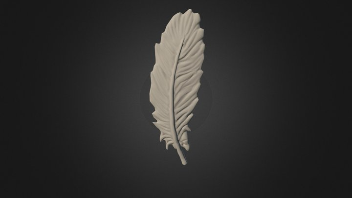 Feather Sculpt 5k Straight 3D Model