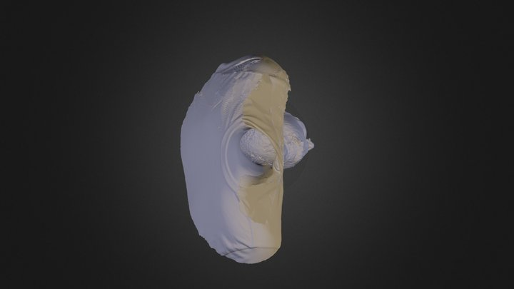 Derek Hawn - 3D Laser Scan 3D Model