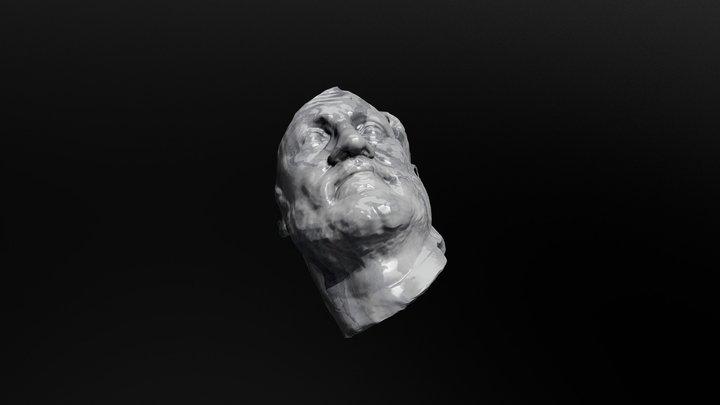 Beard 2 3D Model
