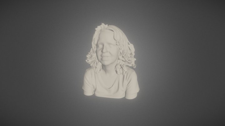 3D scan portrait model 3D Model