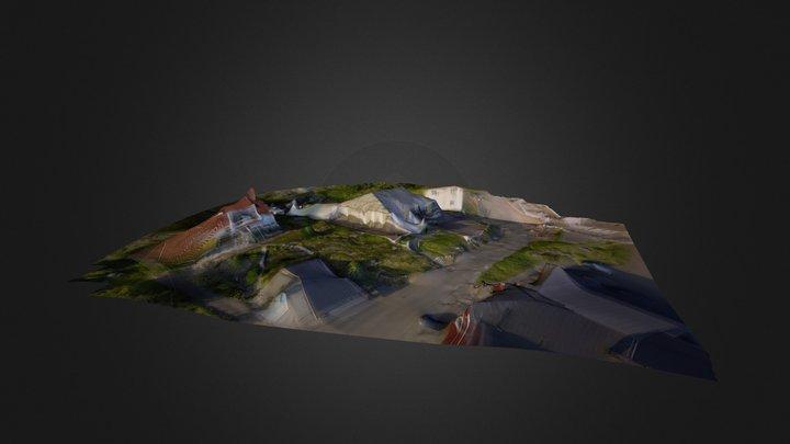 Strand blomman  3D Model