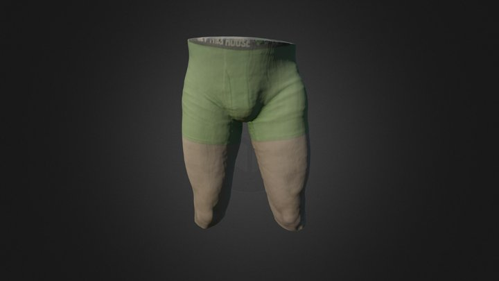 Hip and Thigh 3D Model