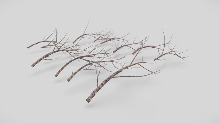 Twigs & Branches Pack 3D Model